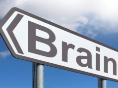 mozg drughr popierdolki